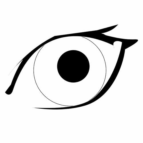 Quelle est la différence entre voir et regarder
