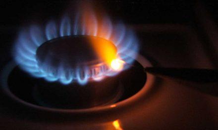 Quelle est la difference entre steam et gas