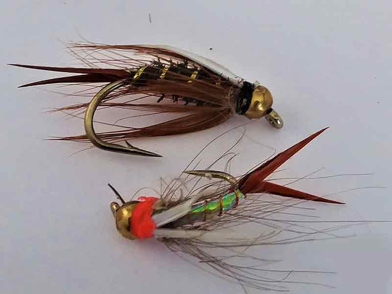 Quelle est la différence entre la pêche à la mouche humide et sèche