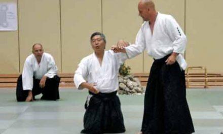 Quelle est la différence entre l'Aikido et le Pencak Silat