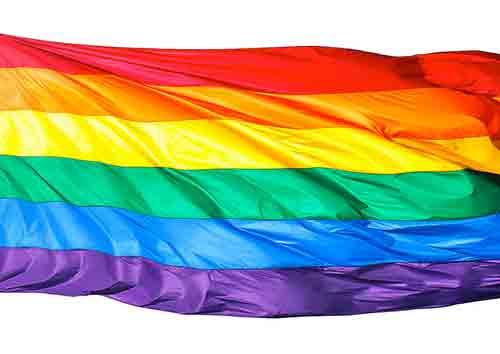 Quelle est la différence entre homosexuel et gay