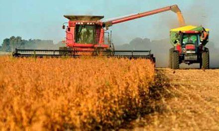 Quelle est la différence entre l'agriculture indienne et américaine
