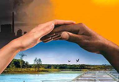 Quelle est la différence entre la biodiversité et le changement climatique