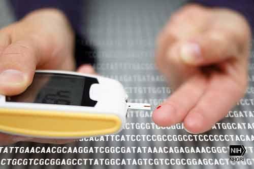 Quelle est la différence entre le diabète gestationnel et le diabète de type 2
